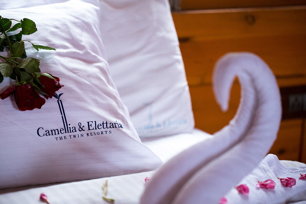 Camellia & Elettaria The Twin Resorts